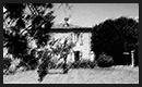 """Chambre d'hôtes """"Le Poulailler de l'île de Ré"""" à Saint-Martin"""